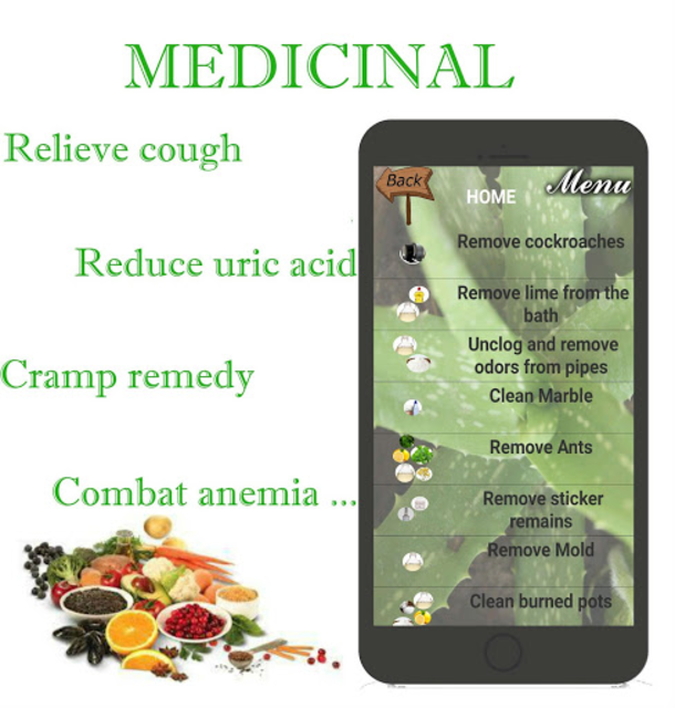 🌿 Natural Home Remedies for all screenshot 5