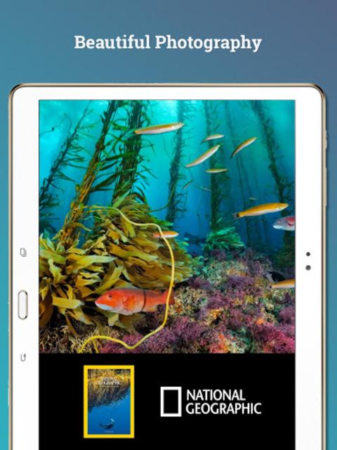 Texture – Unlimited Magazines screenshot 10