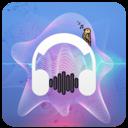 Icon for Marshmello Songs