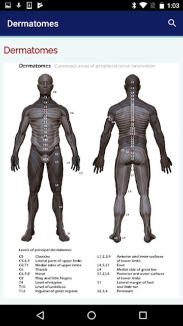 Neurosurgery Survival Guide screenshot 3