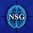 Icon for Neurosurgery Survival Guide