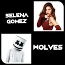 Icon for Selena Gomez Wolves Piano (ft. Marshmello)