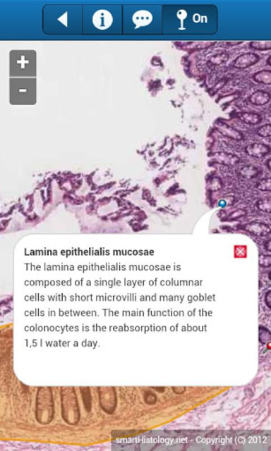 smart Histology screenshot 3