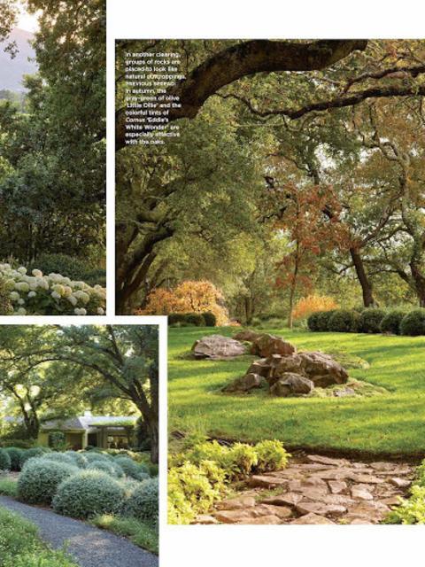 Flower Magazine screenshot 14