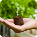 Icon for Container Gardening