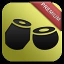 Icon for Rhythm with Tabla & Tanpura PREMIUM