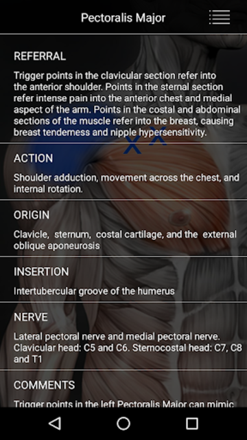 Muscle Trigger Point Anatomy screenshot 13