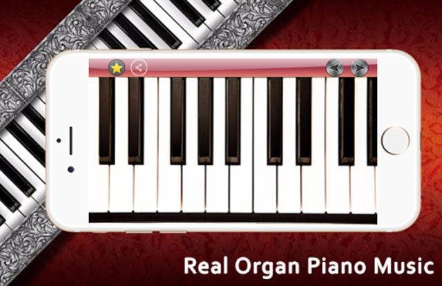Real Organ Piano Music screenshot 1