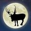 ReindeerCam LIVE!