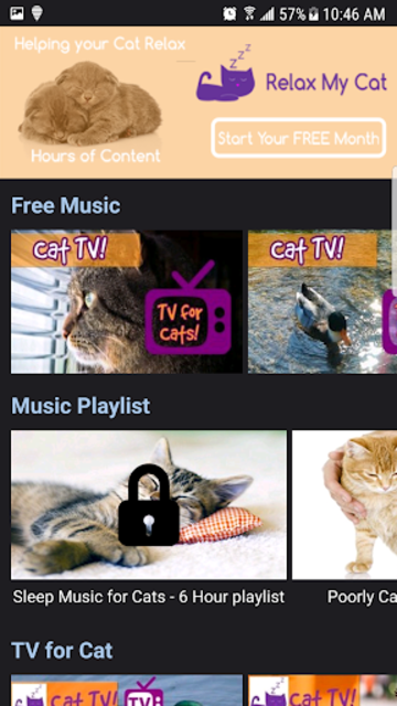Relax My Cat - Relaxing Music and TV for Cats screenshot 1
