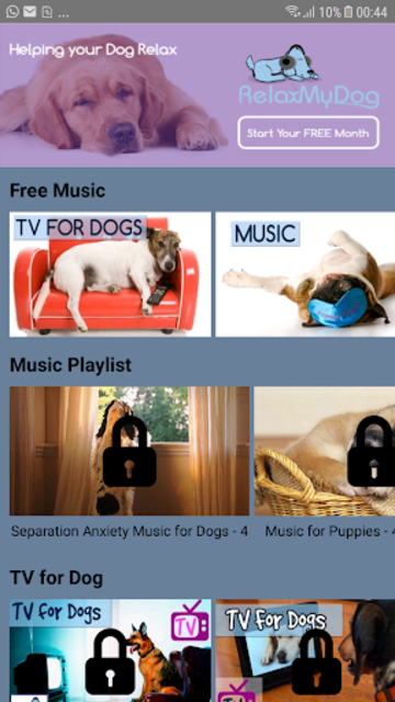 Relax My Dog - soothing Music and TV for dogs screenshot 1