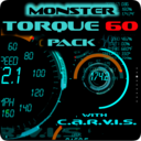 Icon for Torque 60 Pack OBD 2 Themes