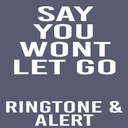 Icon for Say You Wont Let Go Ringtone