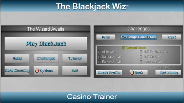 Blackjack Wiz Casino Trainer screenshot 3