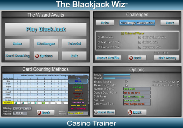Blackjack Wiz Casino Trainer screenshot 10