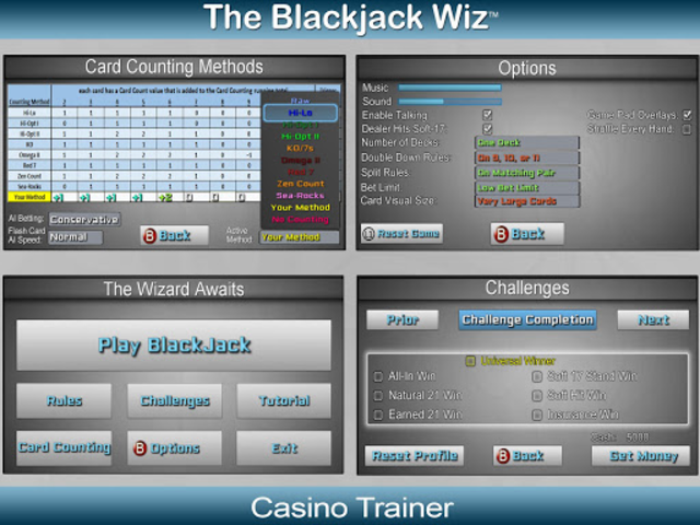 Blackjack Wiz Casino Trainer screenshot 18
