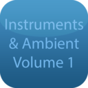 Icon for Real Instruments & Ambient V1