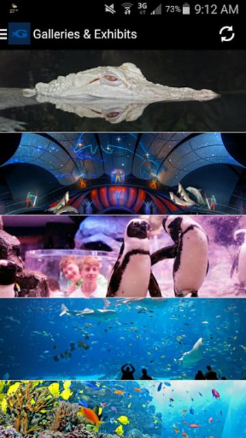 Georgia Aquarium screenshot 2
