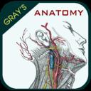 Icon for Gray's Anatomy - Atlas