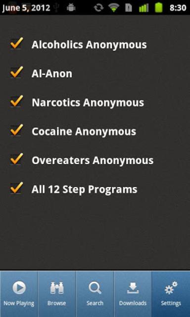 12 Steps Speakers screenshot 4