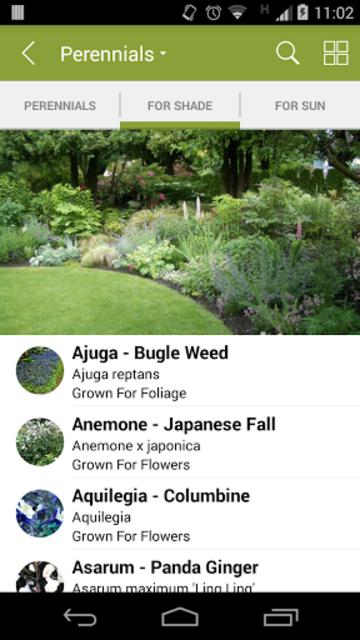 Armitage's Great Garden Plants screenshot 3