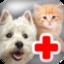 Addictive Pet Vet Game (makes ~$300 a month)