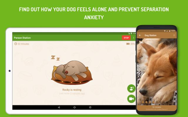 Dog Monitor: Puppy video cam screenshot 7