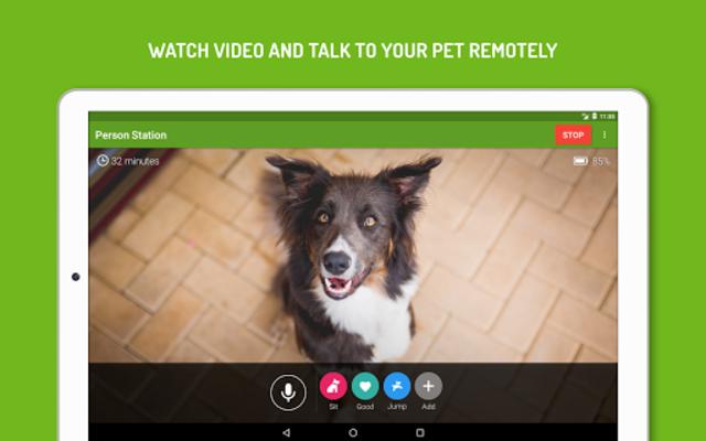 Dog Monitor: Puppy video cam screenshot 8