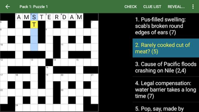 Cryptic Crossword screenshot 6