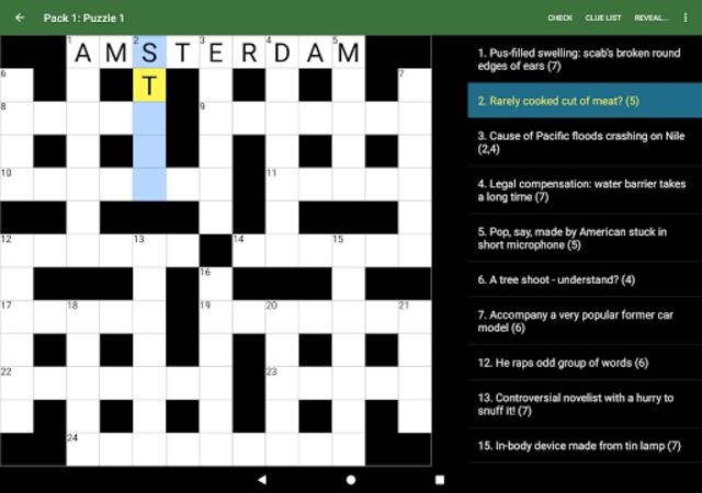 Cryptic Crossword screenshot 18