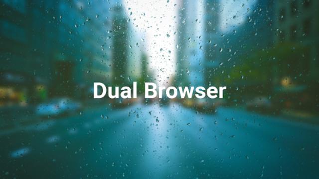 Dual Browser (Paid) Pro screenshot 4