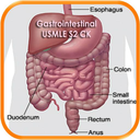 Icon for Gastrointestinal USMLE Stp2 CK