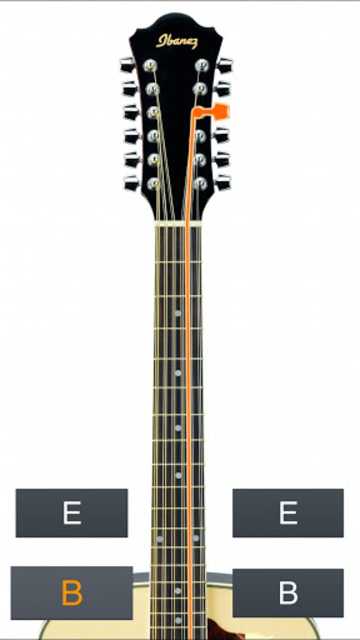 12-String Guitar Tuner Simple screenshot 4