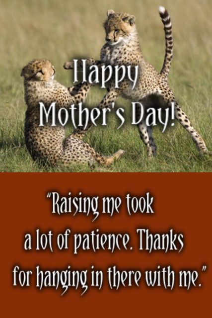 Happy Mother's Day Messages screenshot 4