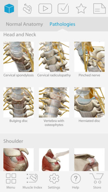 Muscle Premium - Human Anatomy, Kinesiology, Bones screenshot 2