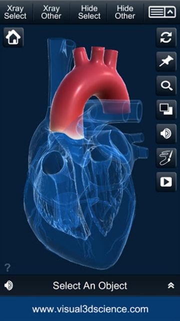 My Heart Anatomy screenshot 5