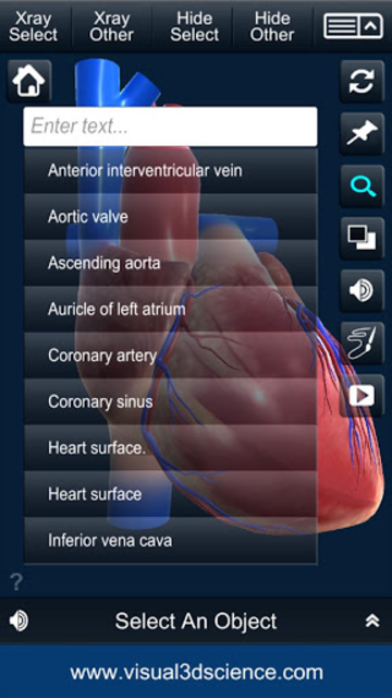 My Heart Anatomy screenshot 7