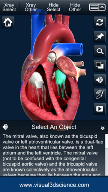 My Heart Anatomy screenshot 8
