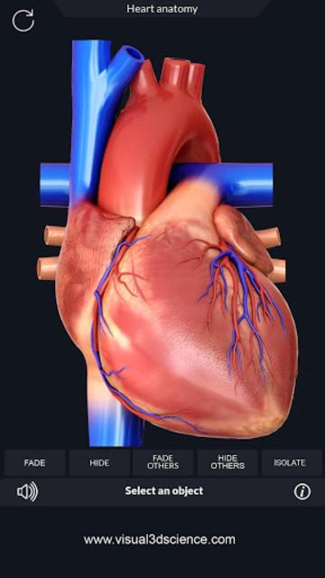 Heart Anatomy Pro. screenshot 1