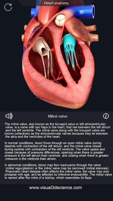Heart Anatomy Pro. screenshot 3