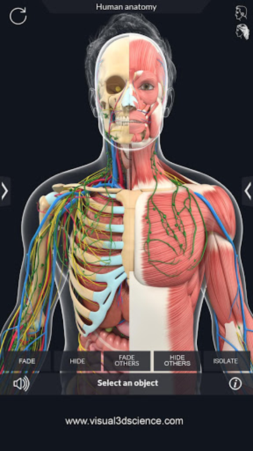 Human Anatomy screenshot 5