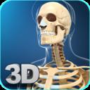Icon for My Skeleton Anatomy