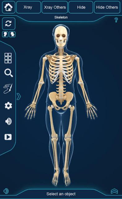My Skeleton Anatomy screenshot 2