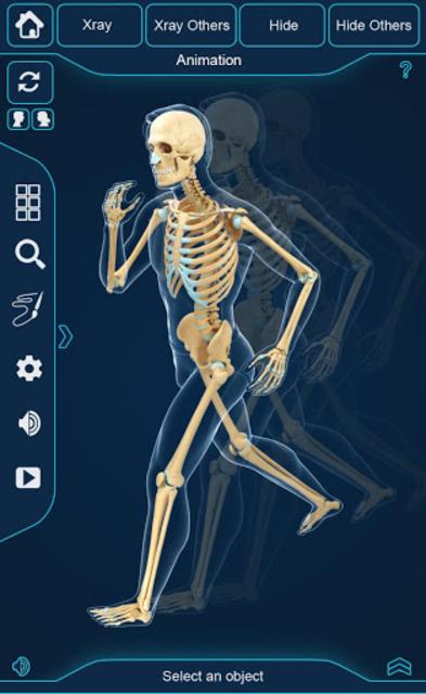 My Skeleton Anatomy screenshot 8