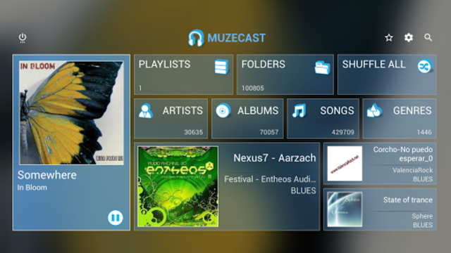 Muzecast Music Streamer screenshot 1
