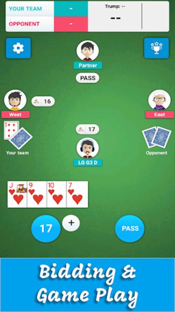 Card Game 29 screenshot 1