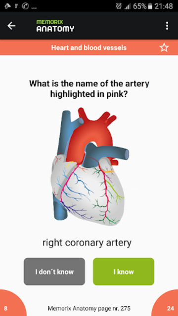 Memorix Anatomy QUIZ screenshot 2