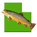 Icon for Utah Fishing