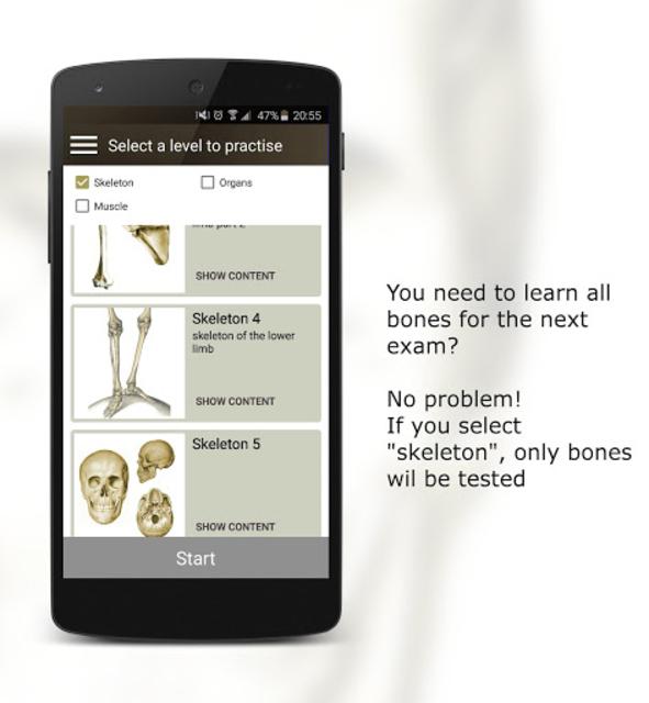 Anatomy Quiz screenshot 6