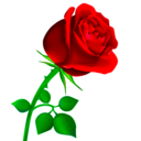 Icon for WAStickerApps Flowers